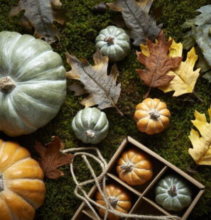 Wikholmform-Box-With-Leaves-Mix-Group-35629